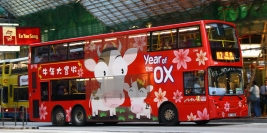2009: Year of the Ox
